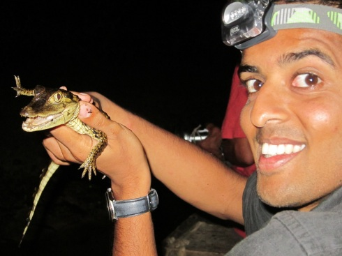 Holding a baby crocodile just snatched out of the water